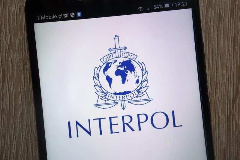 Article Interpol 2